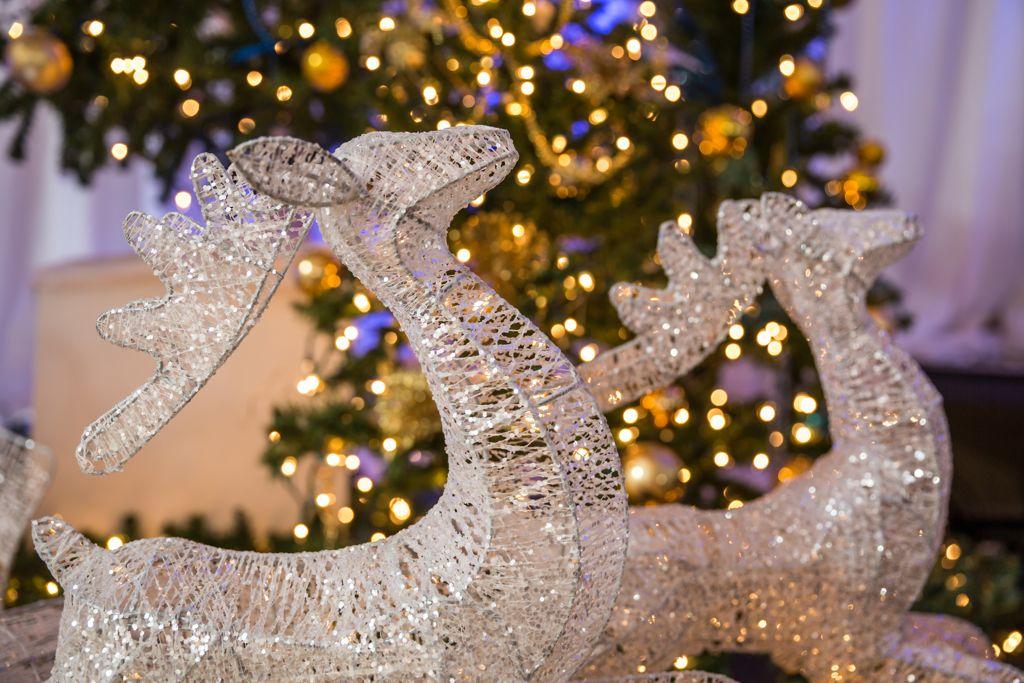 Holiday Inn Christmas Corporate-205099.jpg